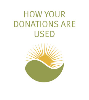 How Your Donations Are Used